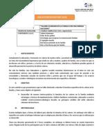 Planificacion Taller PPFF Enfoque Salesiano