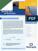 Reportelib022014 (1)