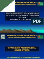 29d_informe Preliminar 29.05.2013 Gaby
