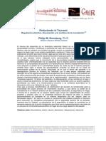 10 PBromberg Reduciendo-el-Tsunami CeIR V3N1