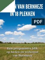 De Kern Van Bernheze in 18 Plekken - Progressief Bernheze