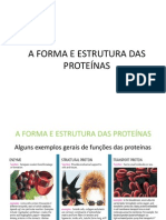 A Forma e Estrutura Das Proteínas