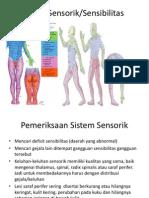 Sistem Sensorik Adlan Cukup