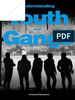 Understanding Youth and Gangs Booklet