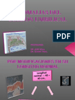 9- Distocia Funicular