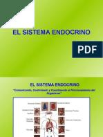 presentacionsistemaendocrino (1)