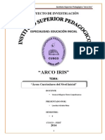 Monografia de Áreas Curriculares Del Nivel Inicial