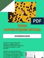 Supervision Eficaz - 2013