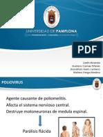 DIAPOSITIVAS pOLIOVIRUS