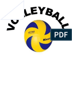 Steve Volleyball Lay-out