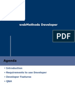 webMethods6_Developer
