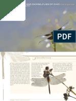 Dragonflies and Damselflies of Ohio Field Guide