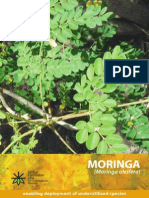 Species Moringa Oleifera