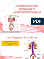 Alteraciones Renales y Genitourinarias (1)