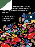 sistematizacion_del_concepto_de_desarrollo_perspectiva_pueblos_indigenas.pdf
