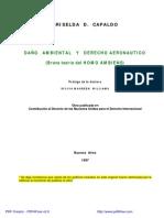 Capaldo_Daño Amb y Dcho Aeron - Teoría Del Homo Ambiens (1)