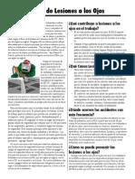 Eyeinjury-Program Prevention.pdf