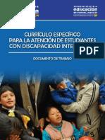 curriculo_dis.pdf