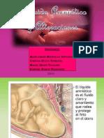 LÍQUIDO AMNIOTICO (Composición, Fisiología y Alteraciones)