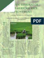 Rice Today Vol. 13, No. 3 The seven samurai of Latin American rice improvement
