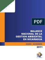 Balance Ambiental 2011