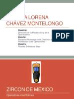 Tarea 2-Caso Zircon de Mexico-Ana Lorena Chavez Montelongo