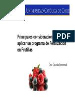 Principales Consideraciones Programa Fertilizacion Frutillas