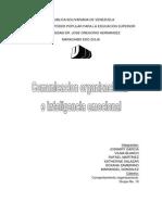 Comunicacion Organizacional e Inteligencia Emocional.2