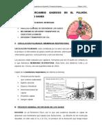 Tema II. Intercambio Gaseoso en El Pulmón. Trasnporte de Gases