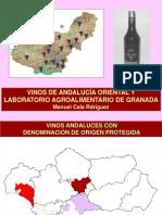 VCG Caracterización 24-6-2014