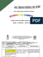 Diario de Campo Final... Toral