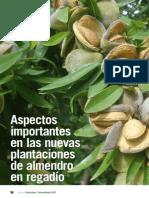 Poda Del Almendra
