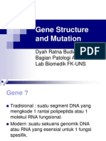 Gene Structure and Mutation