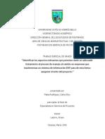 Cultura Organizacional Con ERP
