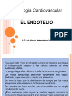 EL ENDOTELIO- Dr nakandakare.pptx