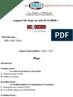 rapport-de-stage-cdg-dev.ppt