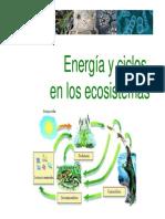 7 - bio-eco_7 (1)