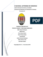 Informe Final (Finanzas Corporativa)