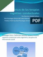 Bases Teóricas de Las Terapias Cognitivo -Conductuales. Primer Día, Primera Sesión