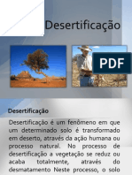 desertificao-130813070020-phpapp01