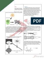 3 Anos Bioenergetica Parte 2-MoÌ-dulo 2 (1)