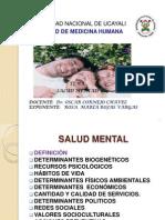 Salud Mental-rosa Rojas