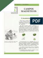 Ficha - Electricidad y Magnetismo - (38)