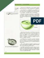 Ficha - Electricidad y Magnetismo - (40)