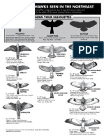 Carrier Guide 2008