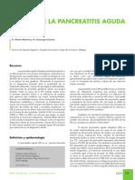 RAPDonline2010v33n2_REVISION5.pdf