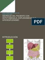 Abordaje Del Paciente Con Hepatomegalia
