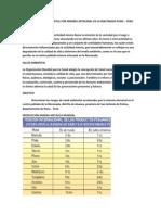 Riesgos de Salud Ambiental Por Minería Artesanal en La Rinconada Puno