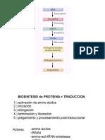 BIOQ121_-6_2011.pdf