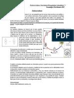 clase parasito 14 _ 26-12-11.pdf